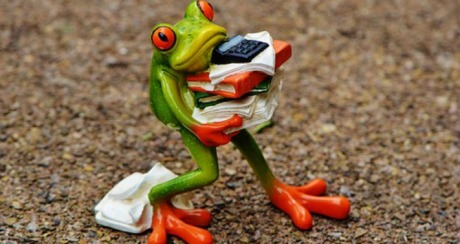 frog-busy32.jpg