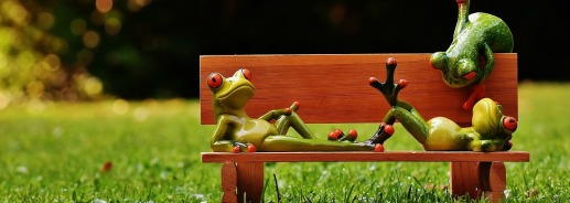 frogs-1642866_1280.jpg